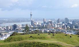 Auckland z lotu ptaka