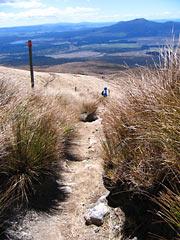 ścieżka wiodąca z chatki Ketetahi