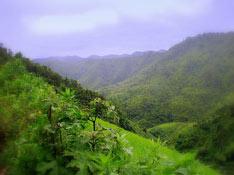 Trekking w Kalaw