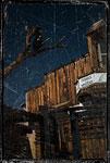 Calico - miasto srebra - fot. Aneta