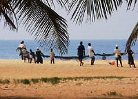 plaża w Lome - rybacy wyciągają sieci